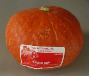amber cup