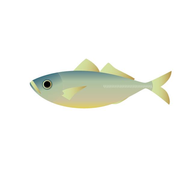 魚介類の名前