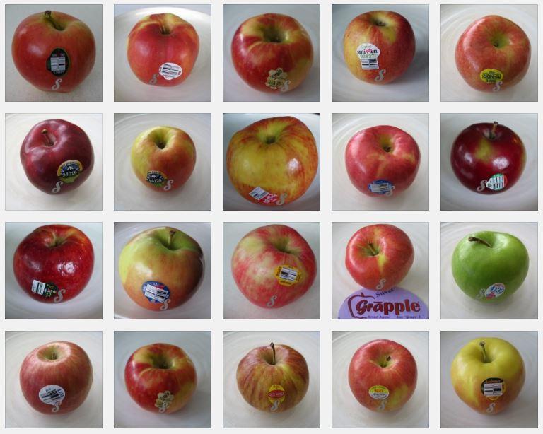 アメリカのりんごの種類