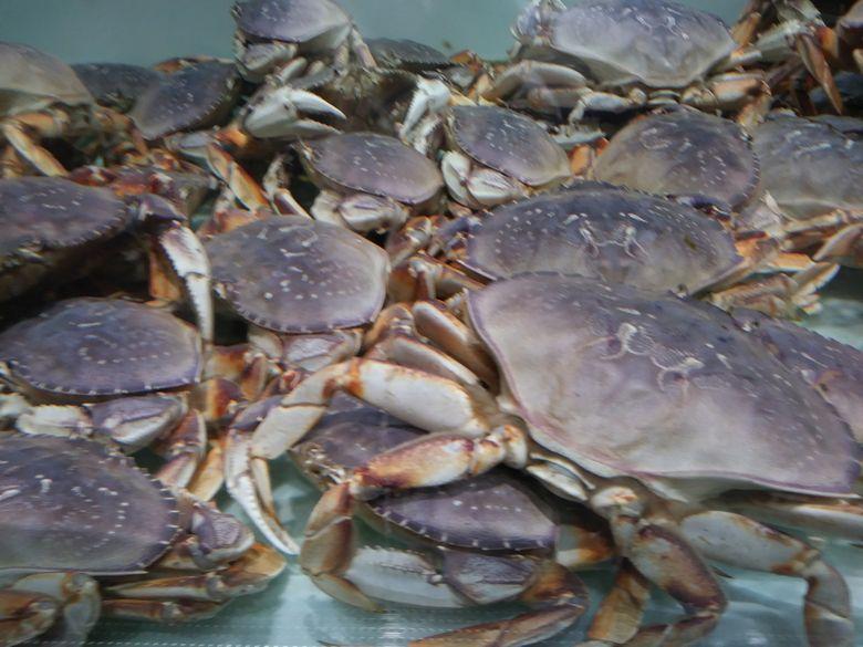 アメリカの蟹
